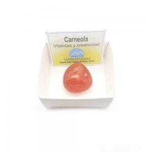 Carneola Piedra Rodado 2-3 cm